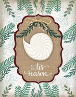 Coastal Christmas IV Framed Print