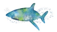 Watercolor Shark I Fine Art Print