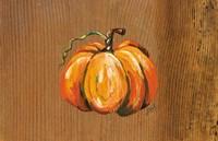 Orange Pumpkin Fine Art Print
