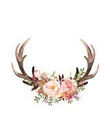 Floral Antlers Fine Art Print