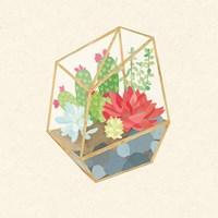 Succulent Terrarium IV Framed Print