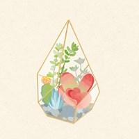 Succulent Terrarium VII Framed Print