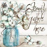 Cotton Boll Mason Jar I Family Fine Art Print