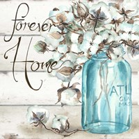 Cotton Boll Mason Jar II Home Fine Art Print