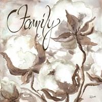 Cotton Boll Triptych Sentiment III (Family) Fine Art Print