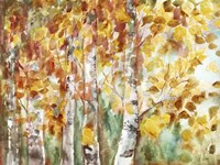 Watercolor Fall Aspens Fine Art Print