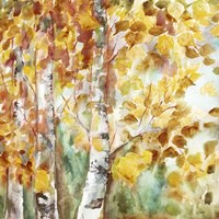 Watercolor Fall Aspens Square Fine Art Print