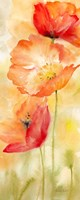 Watercolor Poppy  Meadow Spice Panel II Framed Print