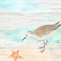 Sandpiper Beach II Fine Art Print
