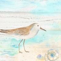Sandpiper Beach III Fine Art Print