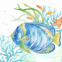 Sea Life Serenade I Fine Art Print