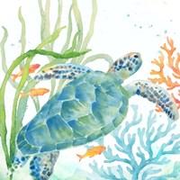 Sea Life Serenade IV Fine Art Print
