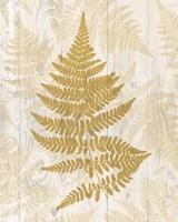 Golden Fern I Fine Art Print