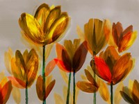 Contemporary Poppies Yellow Fine Art Print