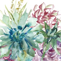 Succulent Garden Watercolor II Fine Art Print