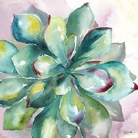 Succulent Watercolor I Framed Print