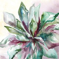 Succulent Watercolor II Fine Art Print