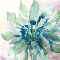Succulent Watercolor III Framed Print