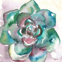 Succulent Watercolor IV Fine Art Print