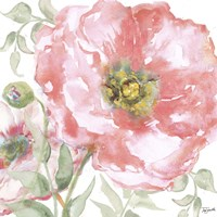Poppy Romance II Framed Print
