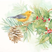 Winter Birds I Warbler Fine Art Print