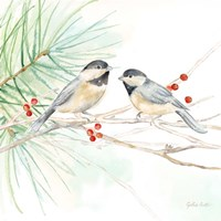 Winter Birds II Chickadees Fine Art Print