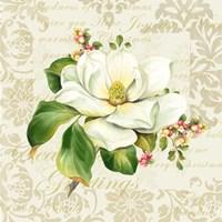 Botanical Christmas Cream III Fine Art Print