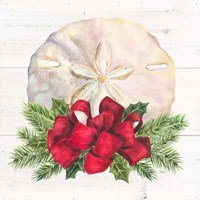 Christmas by the Sea Sanddollar square Fine Art Print