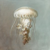 Treasures from the Sea VI Fine Art Print