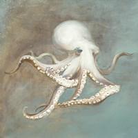 Treasures from the Sea V Fine Art Print