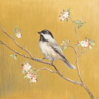 Black Capped Chickadee on Gold Fine Art Print