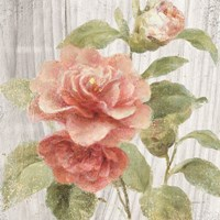 Scented Cottage Florals III Crop Fine Art Print
