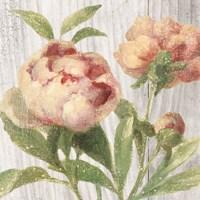 Scented Cottage Florals I Crop Fine Art Print
