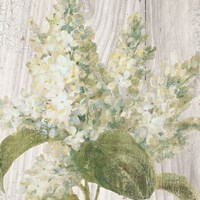 Scented Cottage Florals II Crop Fine Art Print