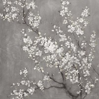 White Cherry Blossoms II on Grey Crop Fine Art Print