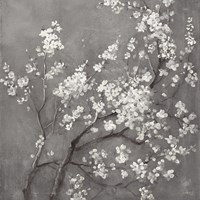 White Cherry Blossoms I on Grey Crop Framed Print
