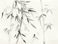 Bamboo Leaves III Fine Art Print