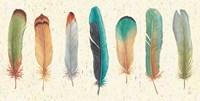 Feather Tales VII Fine Art Print