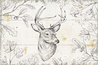Wild and Beautiful IX Fine Art Print