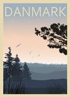 Pine forest Fine Art Print