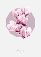 Poly Magnolia Fine Art Print