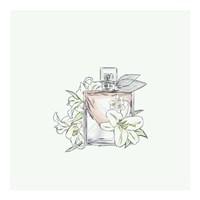 Perfume VI Framed Print