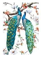 Paradis Birds I Fine Art Print