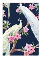 Paradis Birds II Fine Art Print