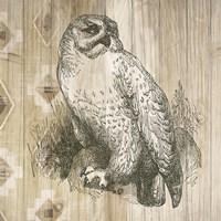 Natural History Lodge II Fine Art Print