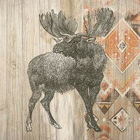 Natural History Lodge Southwest VIII Fine Art Print