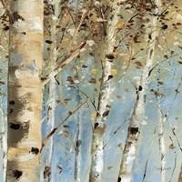 White Forest IV Fine Art Print