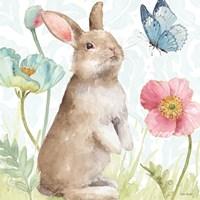 Spring Softies Bunnies II Fine Art Print