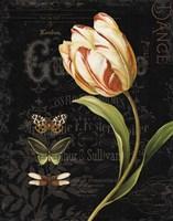 Mothers Treasures V Dark Fine Art Print