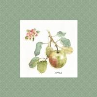 Orchard Bloom I Border Framed Print